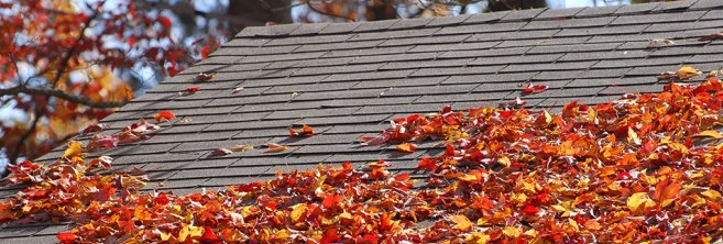 house-roof-in-fall-with-leaves-on-it