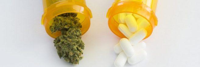 Webinar: Pain Meds! Marijuana! OSHA!